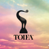 TOIFA Awards Winners List of 2013