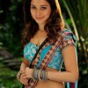 Tamanna Beautiful Looks in Blue Lahanga (Photo 24 of 53 photo(s)).